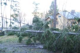Myrskylukemiin nousevat puuskat saattavat kaataa taas puita sähkölinjoille.