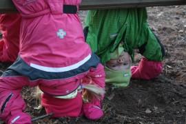 Lapset kaipaavat kavereita ja puuhaa. Tämä kuva on Koristosta Kaarinasta, ja kuvassa temppuilevat Erika Hällfors ja Venla Virtanen.