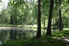 Kiirulanpuiston alueella sijaitseva, Sähköyhtiöntielle näkyvä lampi on säästymässä, sillä sen lähettyvillä on muinaismuistoalue, jolle ei saa rakentaa.