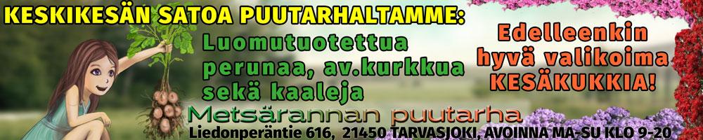 Metsärannan puutarha - kesäkukkia - 25.6