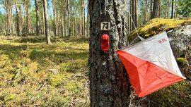 Harrastusrastit vetävät ihmisiä nyt liikkeelle. Kyseessä on valtakunnallinen trendi. – Viime vuonna Suomessa tehtiin 470 000 suoritusta. Se tarkoittaa, että Suomi suunnistetaan päästä päähän monena iltana viikossa, kuvailee puheenjohtaja Jyrki Laine Paimion Rastista.